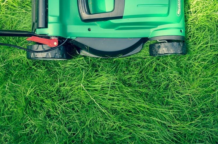 Kosiarka do trawy – jaki model będzie najlepszy?