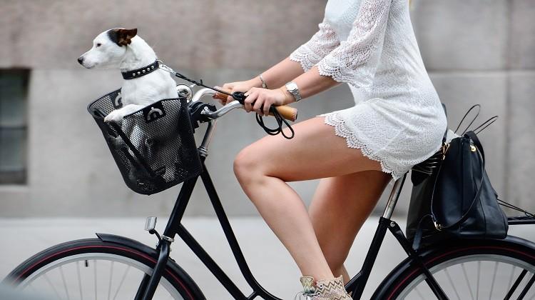 Rower miejski na wiosenne przejażdżki
