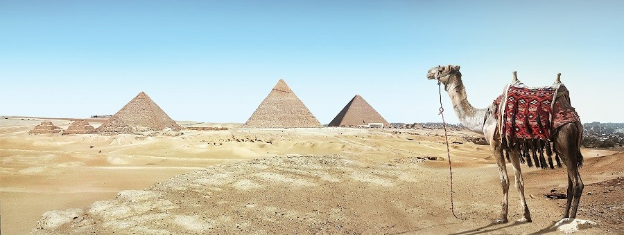 Wakacje w Egipcie - gdzie warto pojechać?