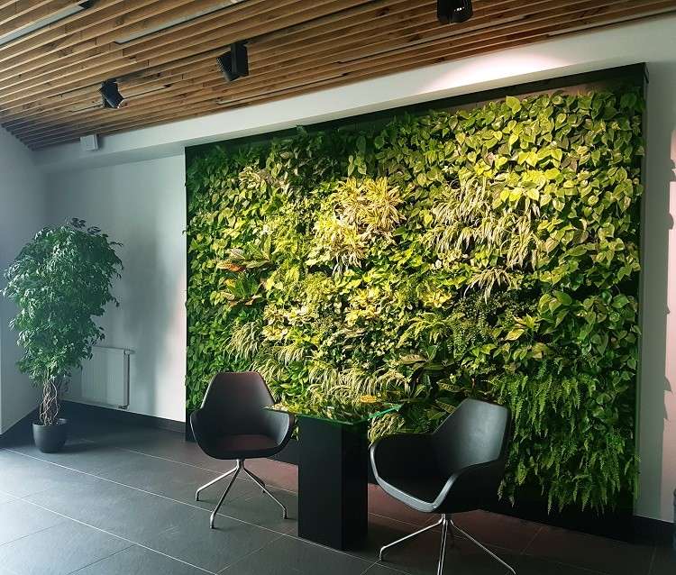 Najnowsze trendy w aranżacji biura? Przede wszystkim zielone ściany!