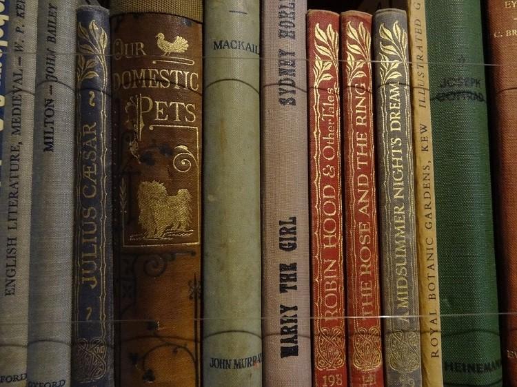 Antykwariat – miejsce, gdzie znajdziesz książkowe perełki