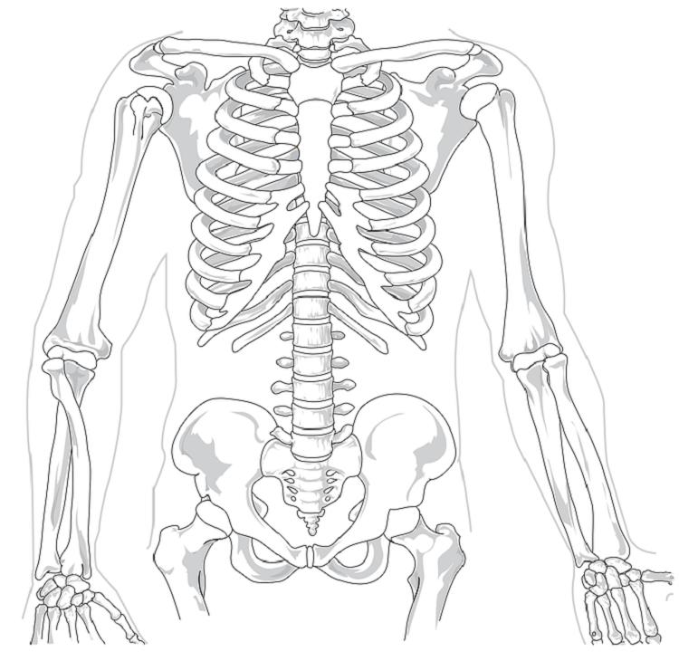 Zewnątrzoponowe blokady kręgosłupa – co warto wiedzieć?