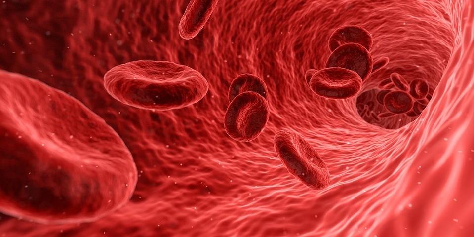 Zalety i wady pobierania komórek macierzystych z krwi pępowinowej