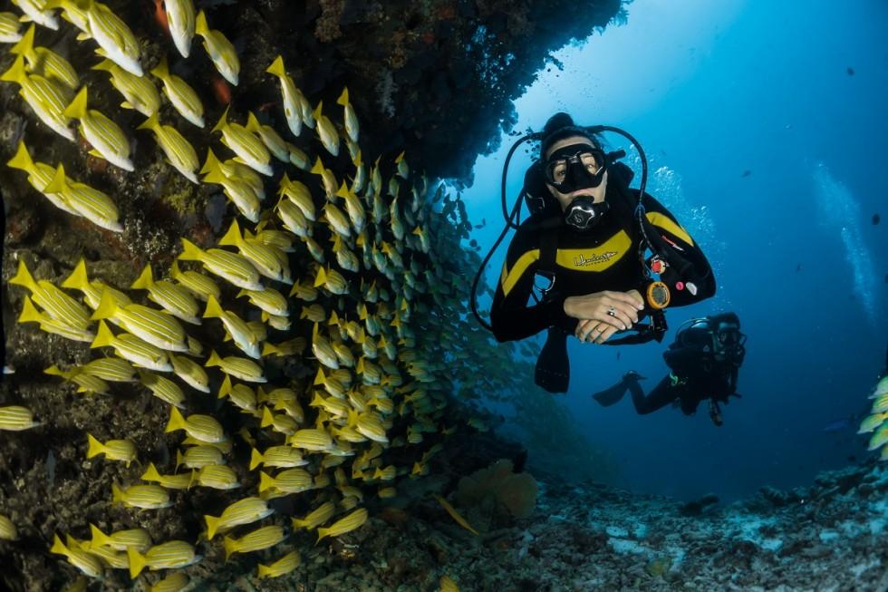 Jak przygotować się do wyjazdu na nurkowanie?